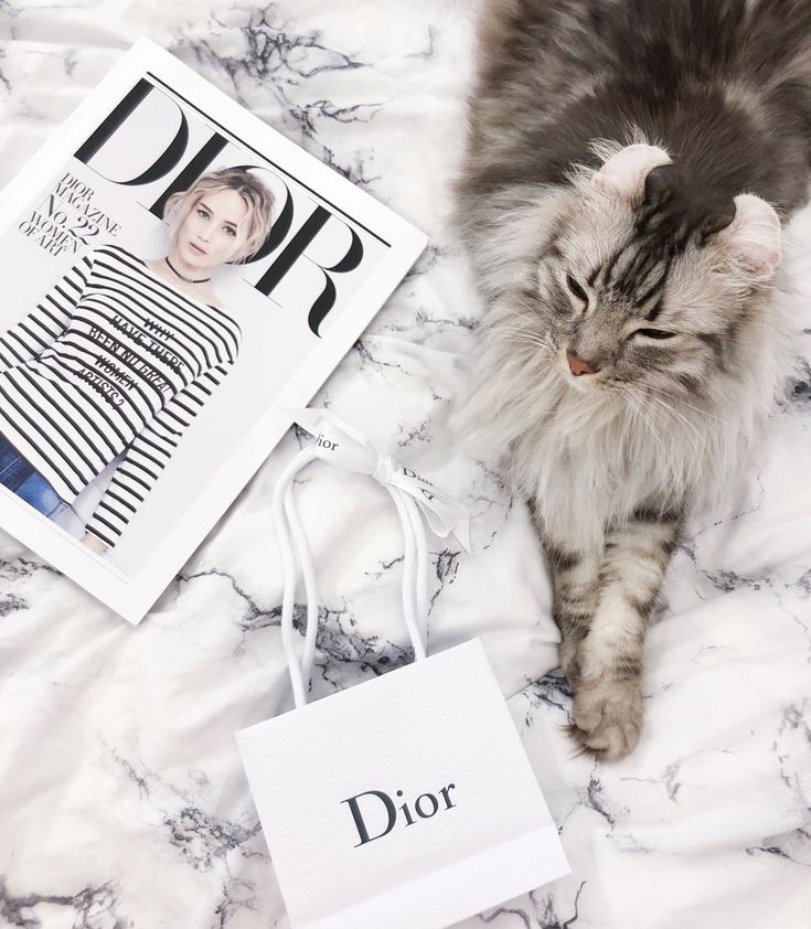 Dior chillax