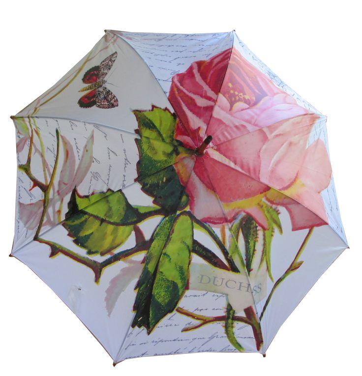 Umbrella Rose Duchess