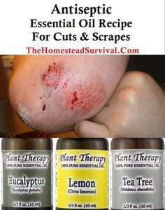 Antiseptic Essential Oil Recipe For Cuts and Scrapes - The Homestead Survival Link is dead but picture is fairly explanatory.