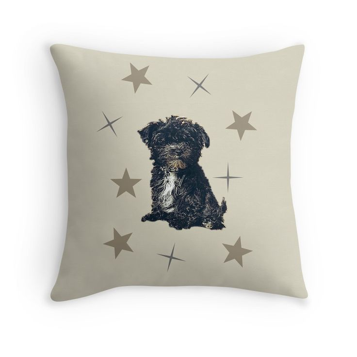 Bolonka Zwetna love pad. This little dog on the cushion can be ordered at: https://www.redbubble.com/people/bbrigitte/works/23524923-little-dog-among-the-stars?p=throw-pillow&ref=artist_shop_grid