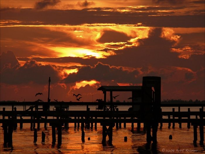 202 Best Things To Do On Pine Island Images On Pinterest