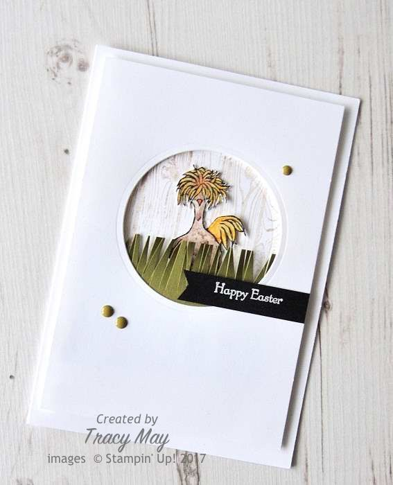 Hey Chick by Stamping' Up! Jittery Chicken Tracy May