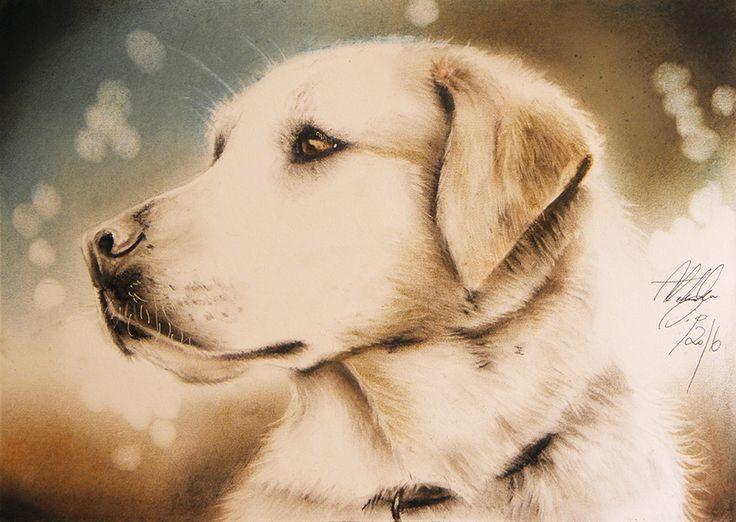 fb.com/aleksandrasipart  https://www.etsy.com/shop/AleksandraSip dogdrawing, dog painting, aleksandra sip artistic works soft pastels art