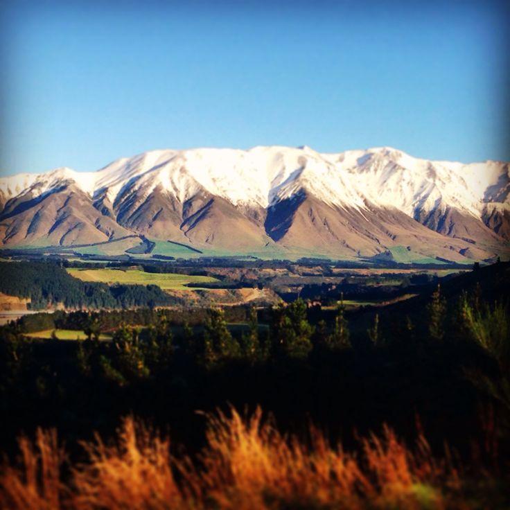 Tattoo Ideas New Zealand: 1000+ Ideas About New Zealand Tattoo On Pinterest
