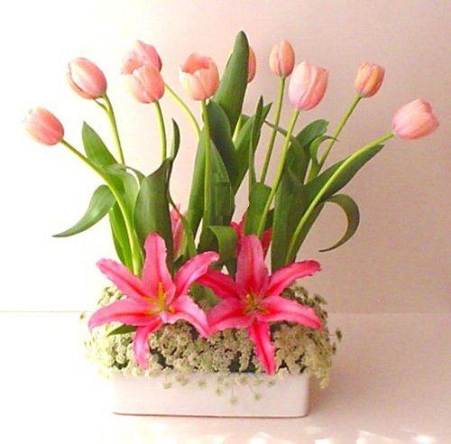 arreglo con una decena de tulipanes y acapulcos nuestros arreglos florales son diseados utilizando las flores