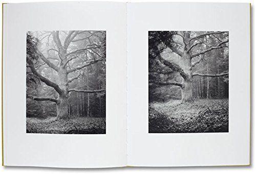 Michael Schmidt: 'Natur'