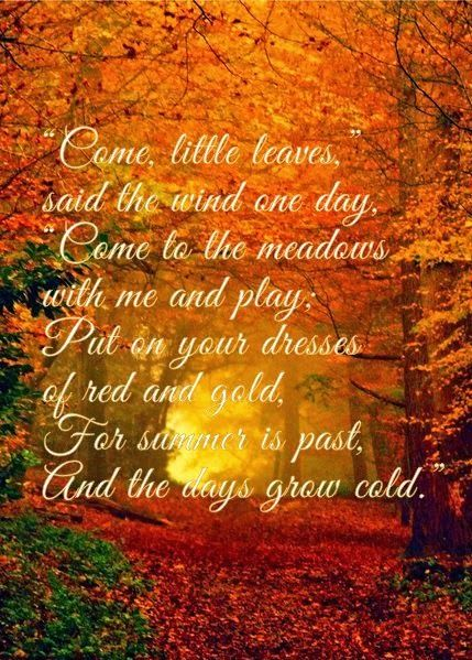 Image result for beautiful  autumn quotes