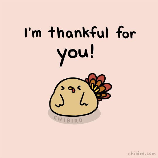 art animation cute holiday thanksgiving holidays you turkey thankful chibird im thankful for you trending #GIF on #Giphy via #IFTTT http://gph.is/2gqqdFW