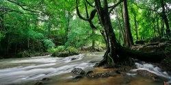 Фотографии Таиланда - Канчанабури и река Квай