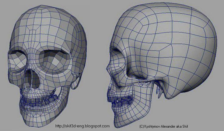 TOPOLOGY Topology, Skull model, 3d character