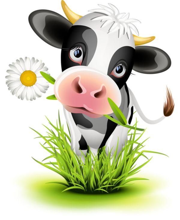 cow                                                                                                                                                                                 Más