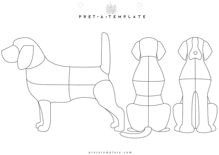Best 25 fashion illustration template ideas on pinterest Dog clothes design your own