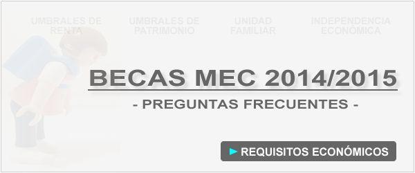 Guía Becas MEC 2014/2015 - Requisitos Económicos
