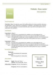 curriculum-vitae-modelo1b-verde
