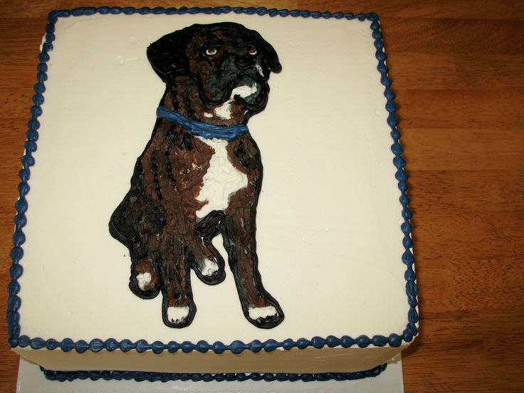 Dog Birthday Cake Charlotte Nc