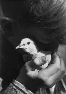 Jean Moral, Lenfant à la colombe, 1930