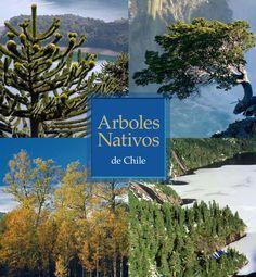 Arboles Nativos de Chile  García, N. & C. Ormazabal. 2008. Arboles Nativos de Chile. Enersis S.A. Santiago, Chile. 196 p.