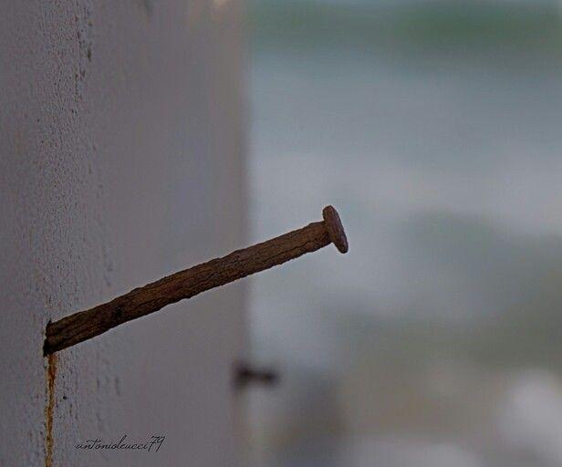 Il sogno non è un chiodo fisso.. È la parete al cielo dove disporre dell'aria da spaziare.. Bgiornata in #poesia <3