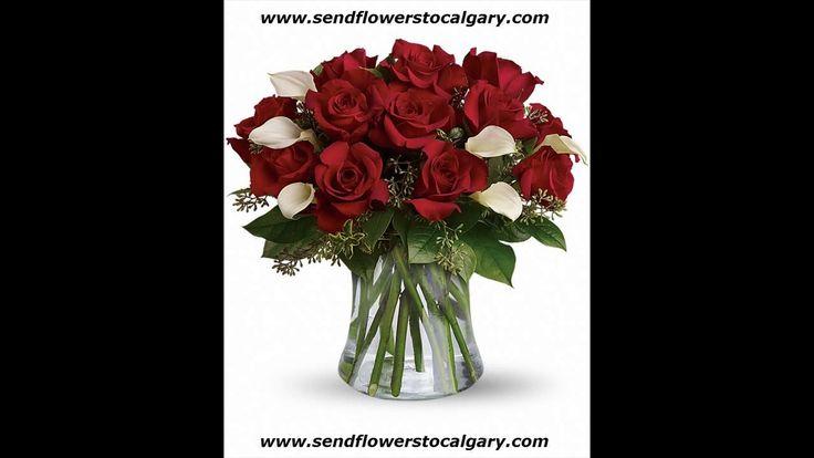 Envoyer des fleurs de Waterloo Québec à Calgary en Alberta https://calgaryflowersdelivery.com | http://sendflowerstocalgary.com #EnvoyerDesFleursÀCalgary #SendFlowersToCalgary #FlowersInCalgary #calgary_flowers