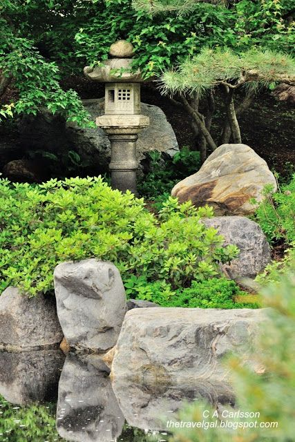 Japanese Garden At Como Conservatory, St. Paul, MN   Google Search