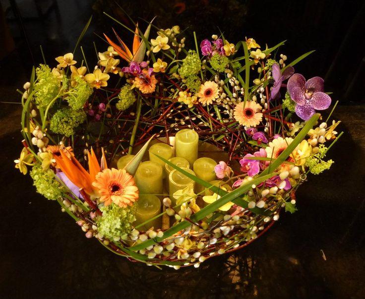 Stein Are Hansen | Floral Fundamentals