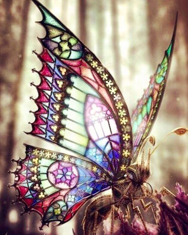 Mariposa vitraux.