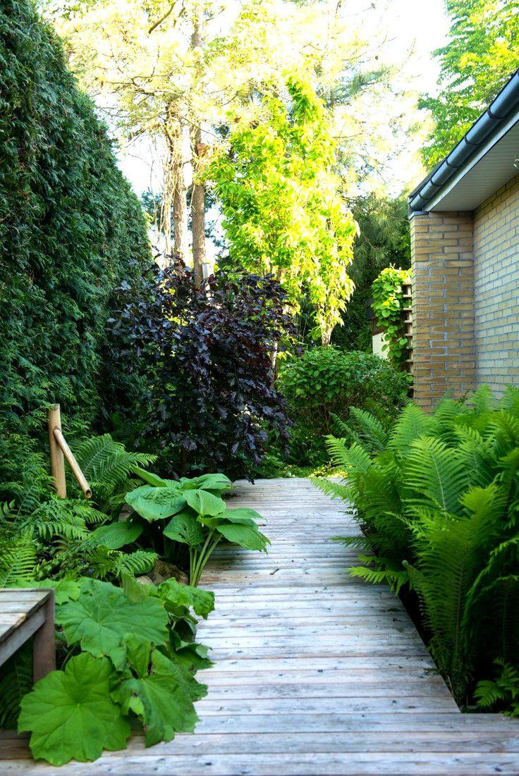 This garden please