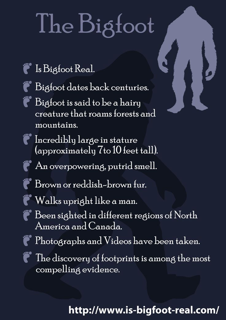 http://www.is-bigfoot-real.com/ Is Bigfoot real? No one really knows for sure if the mysterious Bigfoot is urban legend, folklore, myth, a hoax, or actual fact.