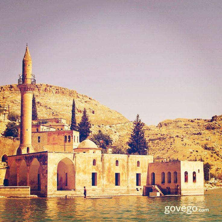 """Bugün Şanlıurfa'dayız  Savaşan Köyü, Halfeti, Fırat Nehri üzerinde yer alan bir """"batık şehir"""". Birçok tarihi kalıntı ve doğal güzelliği bir arada bulacağınız Halfeti'de Uluca Camii'nin kıyısından geçiyoruz.  ----------------------------- govego.com/sanliurfa-otobus-bileti  #doğa #naturel #yeşil #green #life #lifeisgood #seyahatetmek #seyahat #yolculuk #gezi #view #manzara #gününkaresi #huzur #an  #anatolia #turkey #travel #turizm #türkiye #turkey"""