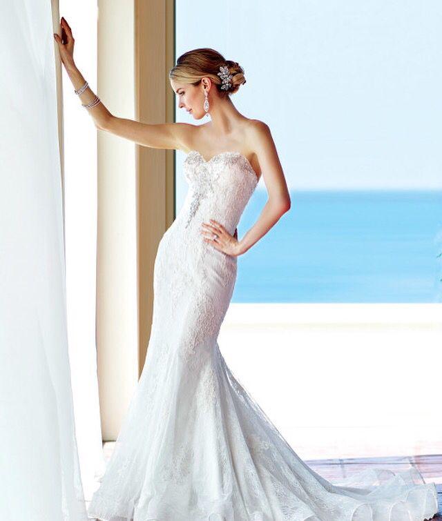marketplace  elegant bridal boutique auburn