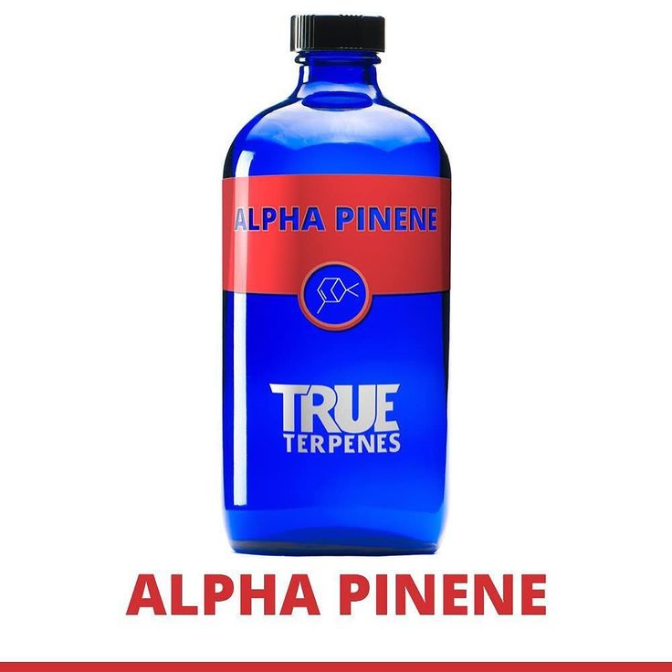 Alpha Pinene is an earthy piney herbal terpene with a sharp pine and cedarwood flavor. Strains known for their content of Alpha Pinene are Blue Dream Jack Herer and Og Kush. Isolated Alpha Pinene is sourced from conifer trees herbs such as rosemary and sage and found in some varieties of citrus. Alpha Pinene is known for its uplifting and energizing effects it is also suggested to offer relief from inflammation and act as a bronchodilator  meaning it opens airways allowing for easier…