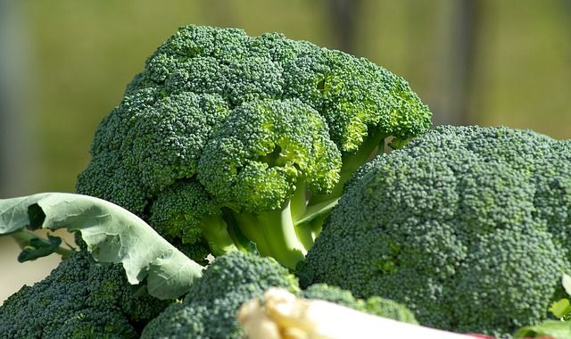 El brócoli es la hortaliza con mayor aporte nutricional por unidad de peso comestible, razón por la que se conoce como la superverdura. Recomendada para con