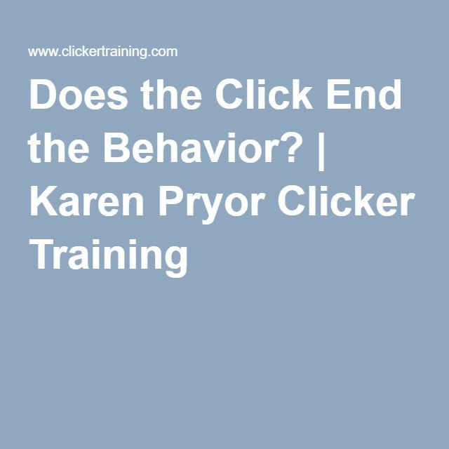 Does the Click End the Behavior? | Karen Pryor Clicker Training