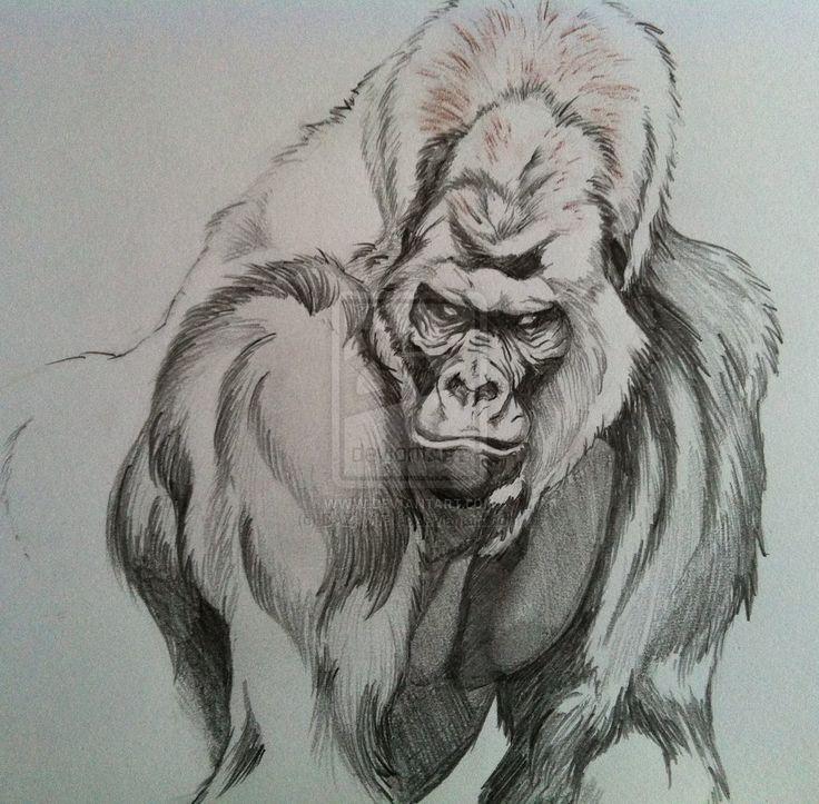 Silverback Gorilla Tattoos Images & Pictures - Findpik