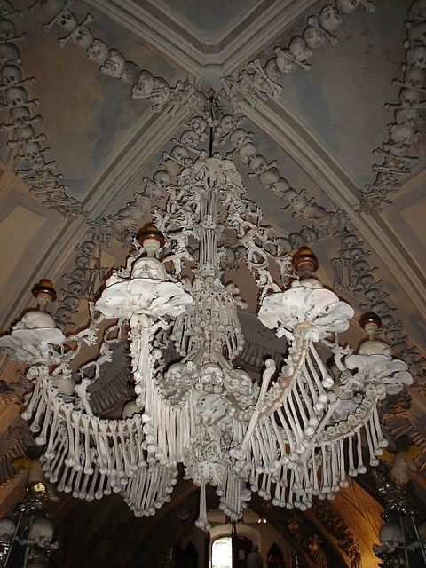 1090 best chandelier images on pinterest chandeliers light mom and i sae this chandelier of bones in a prague church supposedly made up from at least one of every bone in the body mozeypictures Image collections