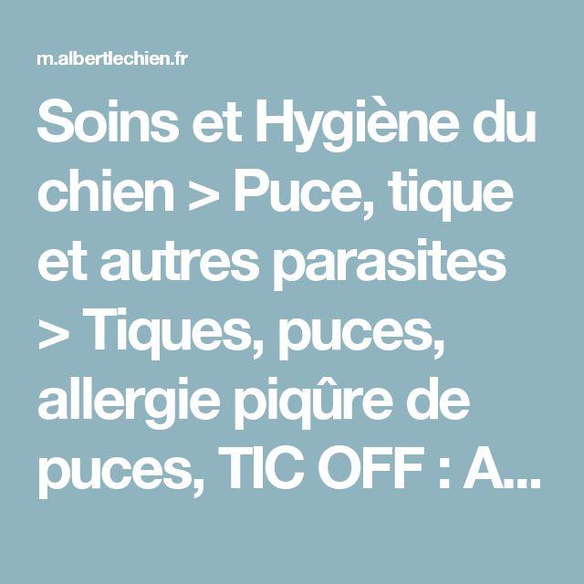 Soins et Hygiène du chien > Puce, tique et autres parasites > Tiques, puces, allergie piqûre de puces, TIC OFF : Albert le chien