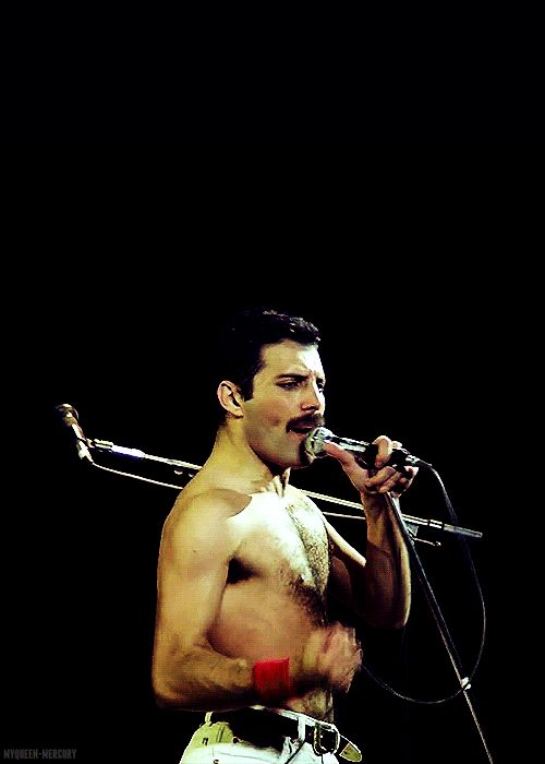 91 best images about Freddie Mercury on Pinterest ...