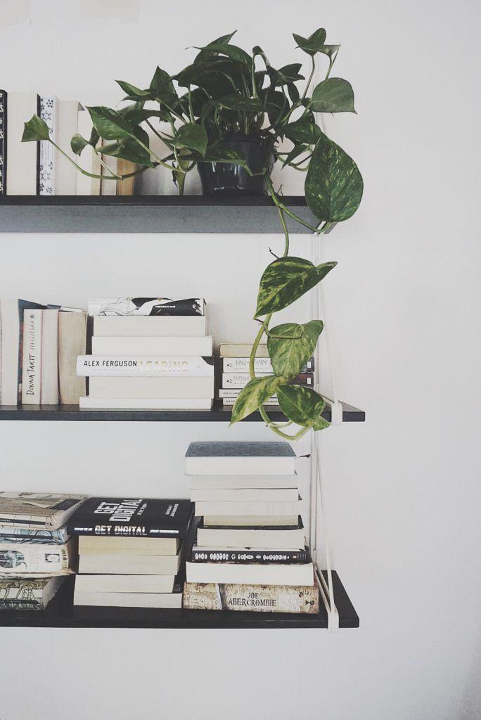 Love this bookshelf, decorated with greenery.