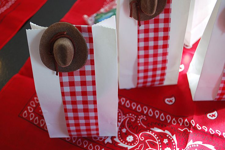 Birthday party Favor Ideas for Toy Story or Cowboy Birthday Party