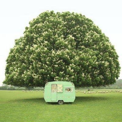Going Green: Vintage Trailers, Mint Green, Vintage Caravan, Green Natural, Cath Kidston, Travel Trailers, Vintage Green, Vintage Campers Trailers, My Style