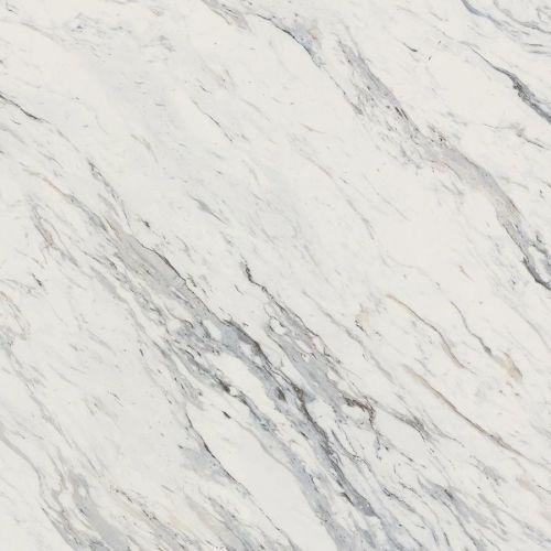 Best 25 Calcutta Marble Ideas On Pinterest Marble