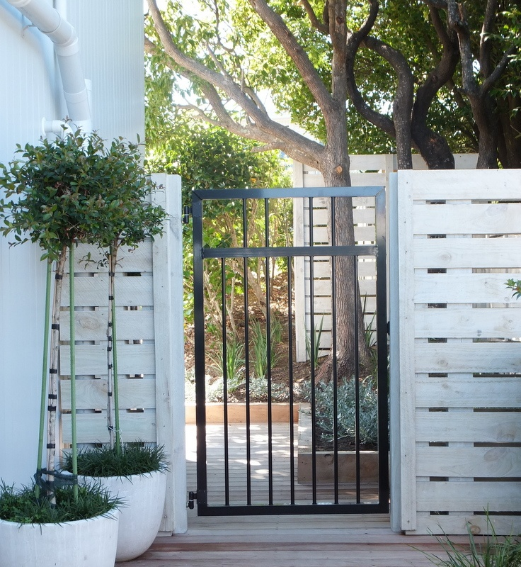front gate in black wrought iron. Fence is standard timber laid horizontally and lime washed makes it look expensive!