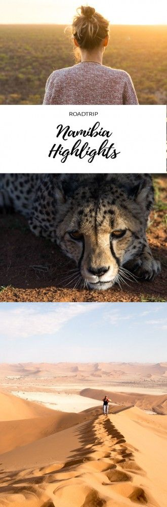 Namibia Roadtrip. Rundreise mit dem Mietauto zu den Highlights Namibias. Unterwegs in Afrika zwischen Wüsten, Nationalparks und wilden Tieren.