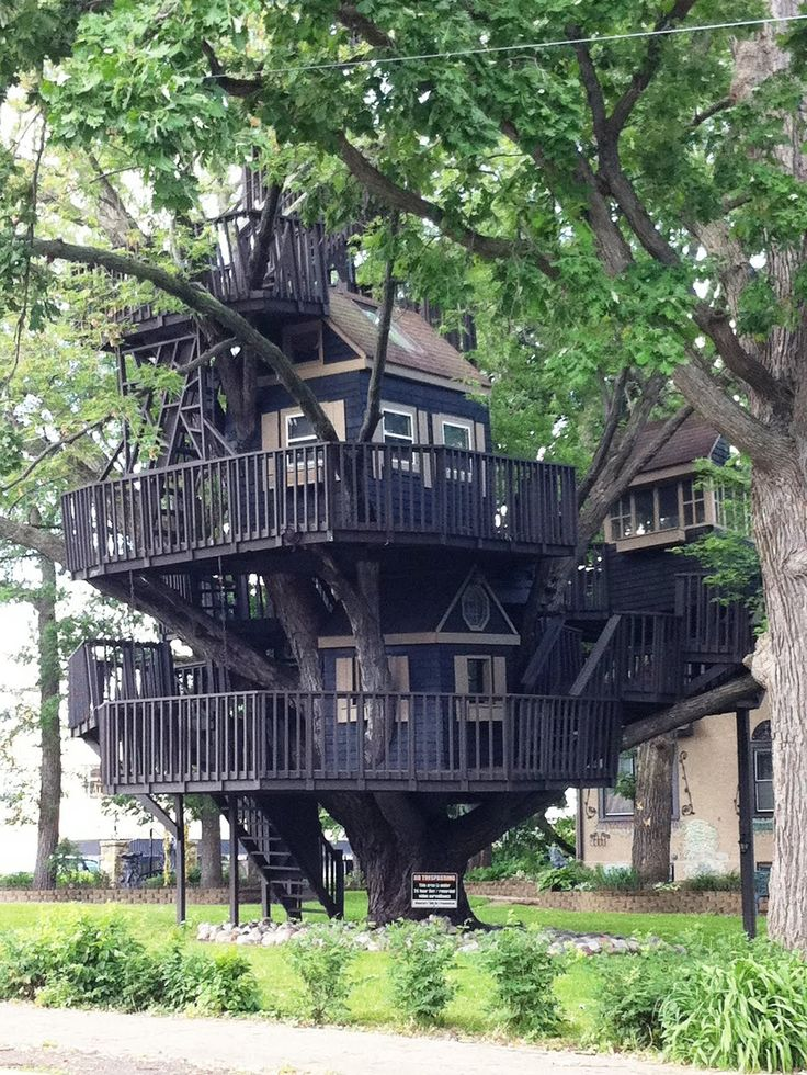 Nice Tree Houses 539 best tree houses images on pinterest | treehouses