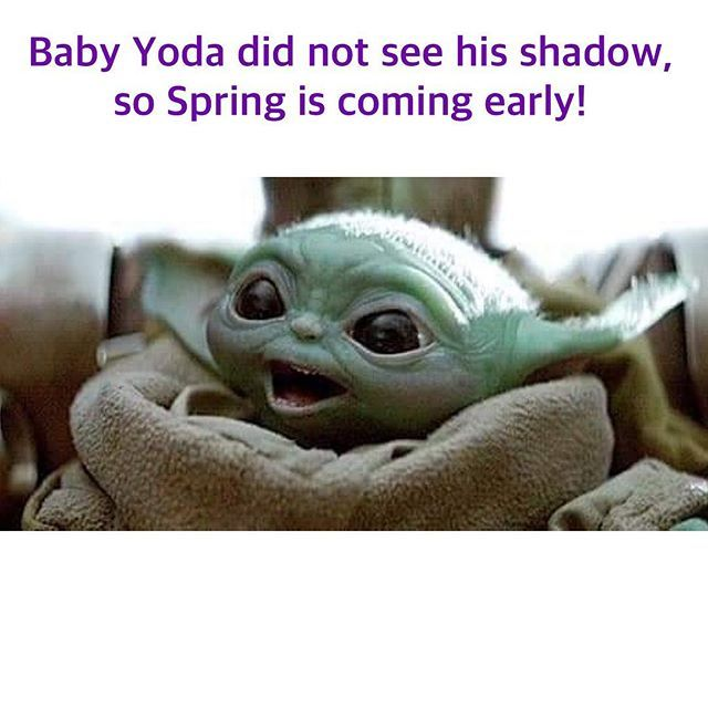 Happy Baby Yoda Day And Early Spring Yoda Meme Yoda Funny Funny Memes