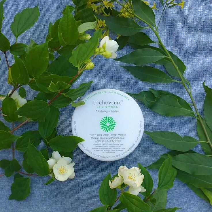 Sage tea tree oil nettle and peppermint oil are incorporated in this highly concentrated deep therapy masque to leave the scalp in an aseptic condition and to stimulate blood flow. #trichovedic #hairwisdom #luxuryhaircare #hairtreatment