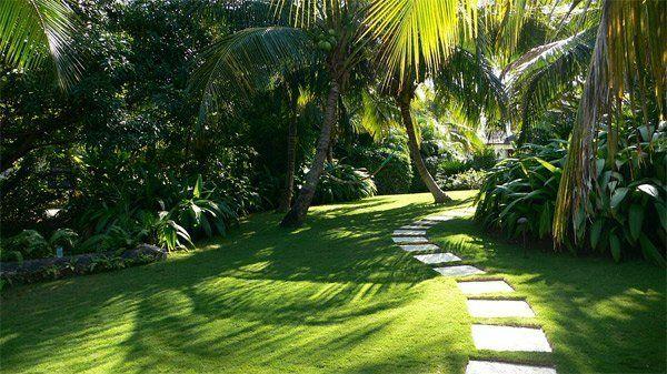 20 Tropical Landscape Designs That Brings Coolness To Your Place Tropical Landscaping Tropical Landscape Design Landscape Design
