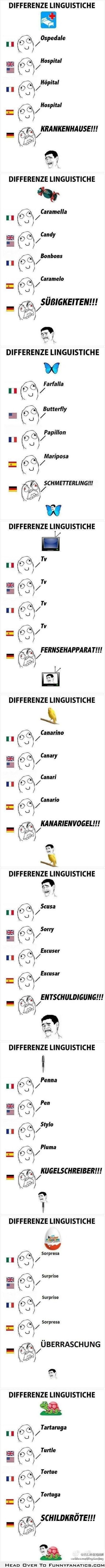 Different languages.