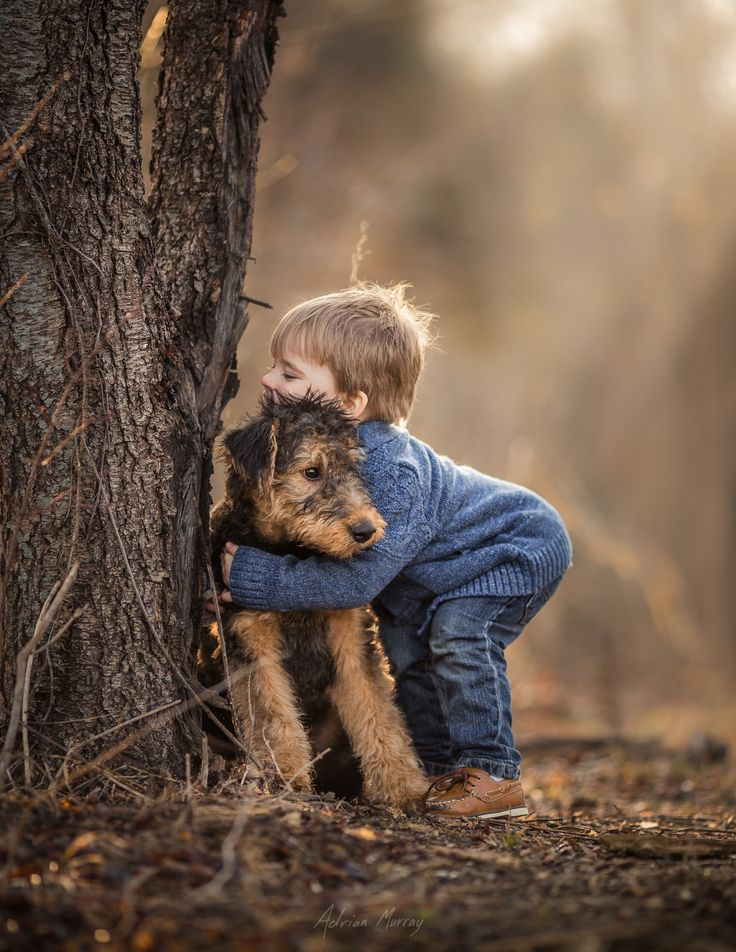 #Airedale and his boy