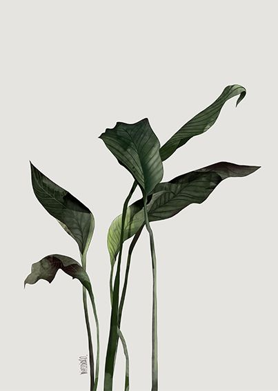 FoliageComposition2